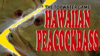 hawaiiDVD.jpg
