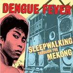 dengue_fever3.jpg