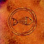fishbone.jpg
