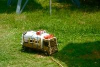 toy_truck.jpg