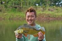 akashi_fish.jpg