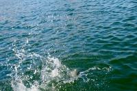 110417-Water.jpg
