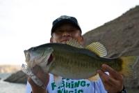 110414PlaPen+Fish.jpg